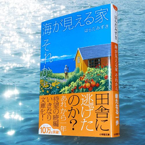 ◎編集者コラム◎ 『海が見える家 逆風』はらだみずき